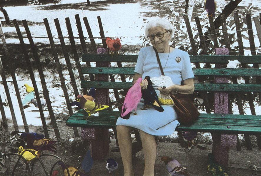 Bird Woman of Central Park - Jane Krensky Photographer